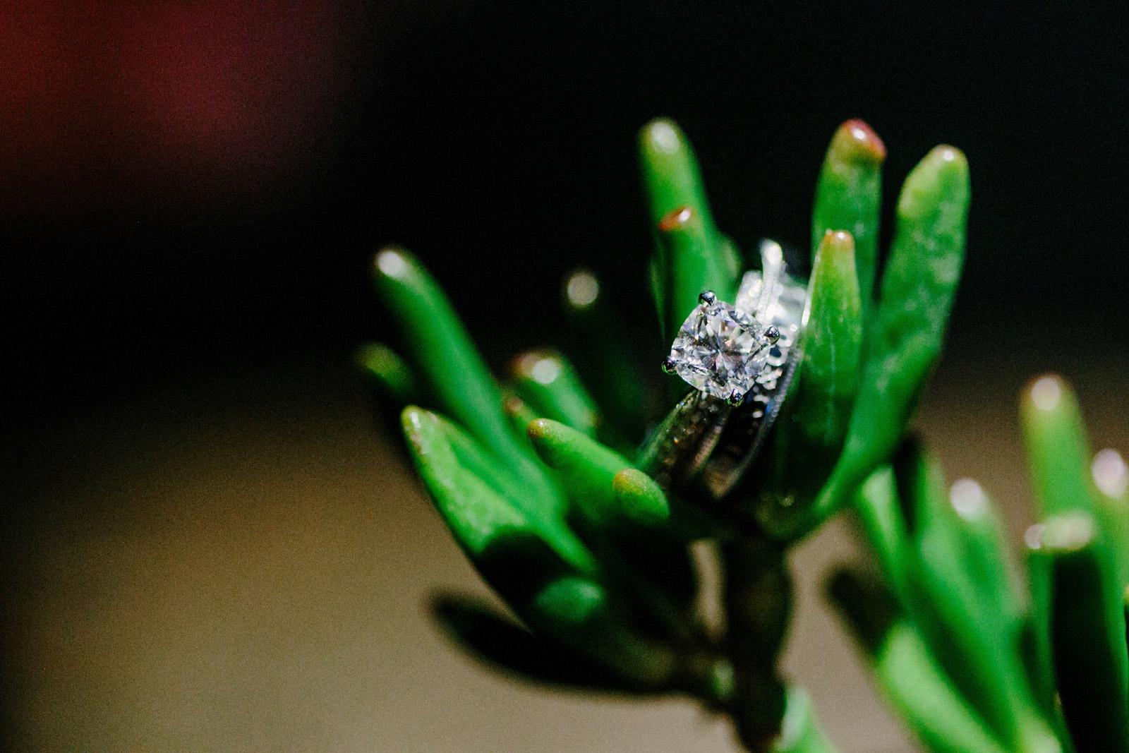 wedding-sonia-kev-095